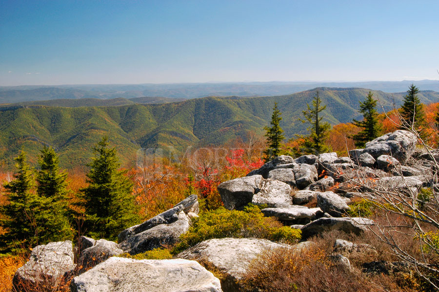 Mountain Overlook At Dolly Sods