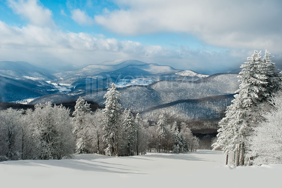 Winter on Cheat Mountain